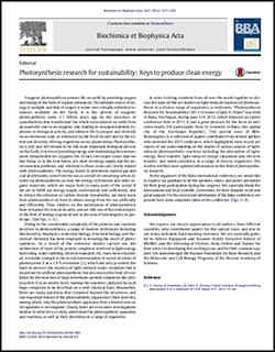 Biochimica et Biophysica Acta 1837 (2014) 1377–1383
